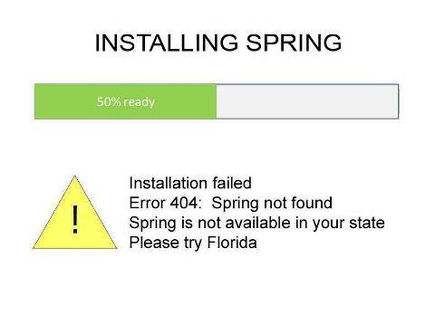 spring install